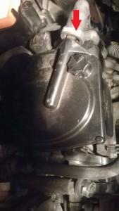 filtro gasolio (1)